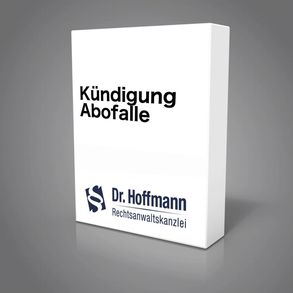 Kündigung Ideo Labs GmbH